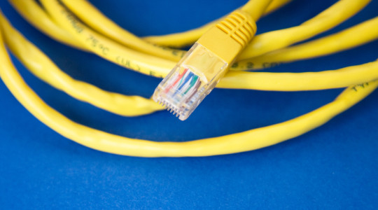 Yellow network cables on blue background